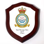 RAF Squadron Shield Plaque PERSONALISED, ref RAFP